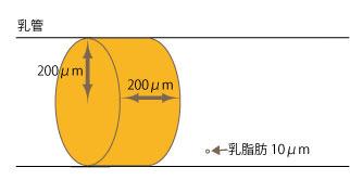 20130306.jpg